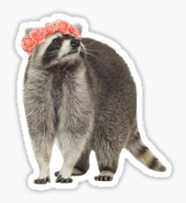 Clexa Raccoon Sticker