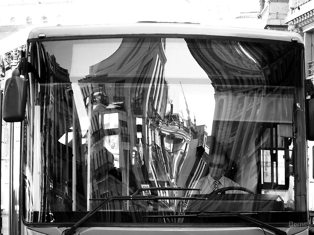 The Bus Driver and the Reflection by Berns