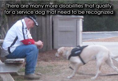 Psychiatric Service Dog Academy by psdregistry