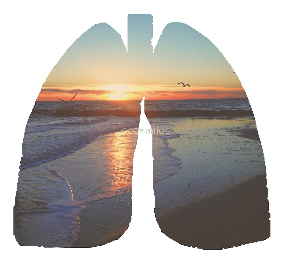 Sunset Beach Lungs by seasmiles