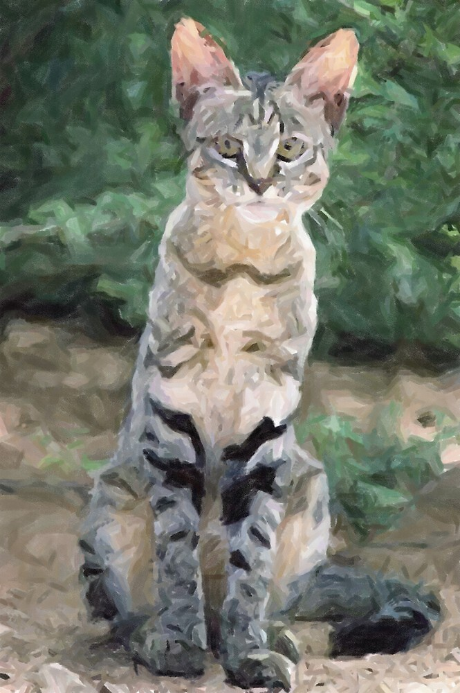 African Wild Cat Wildlife Artwork by Oldetimemercan