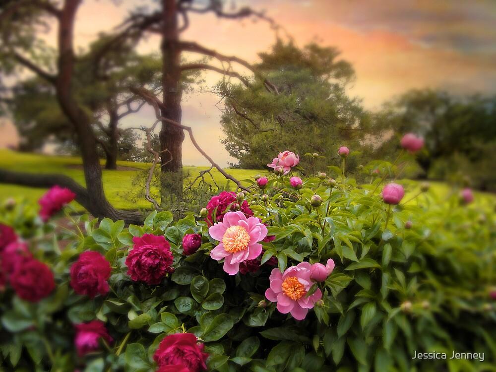 Peony Blossom by Jessica Jenney