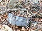 Old Washtub by FrankieCat