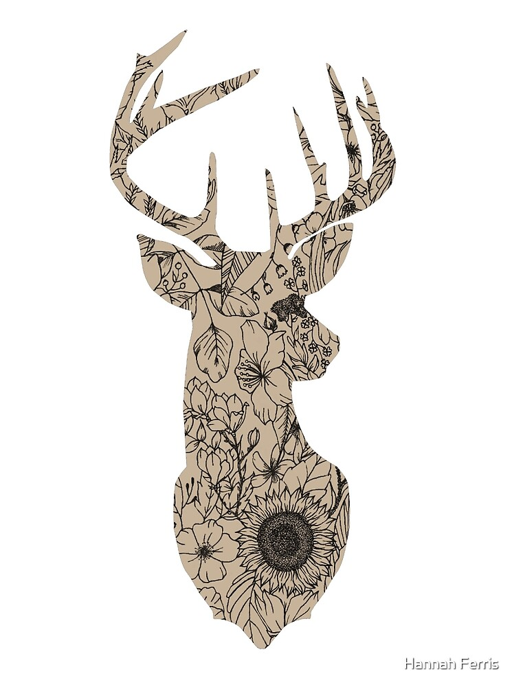 Floral Buck by Hannah Ferris