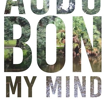 AudubOn My Mind by kni-nola