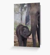 Mother and Babe Greeting Card