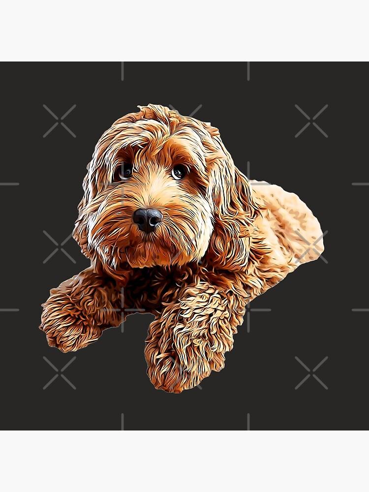 Doodle Cockerpoo Cockapoo Spoodle Cute Puppy Dog by Elarex