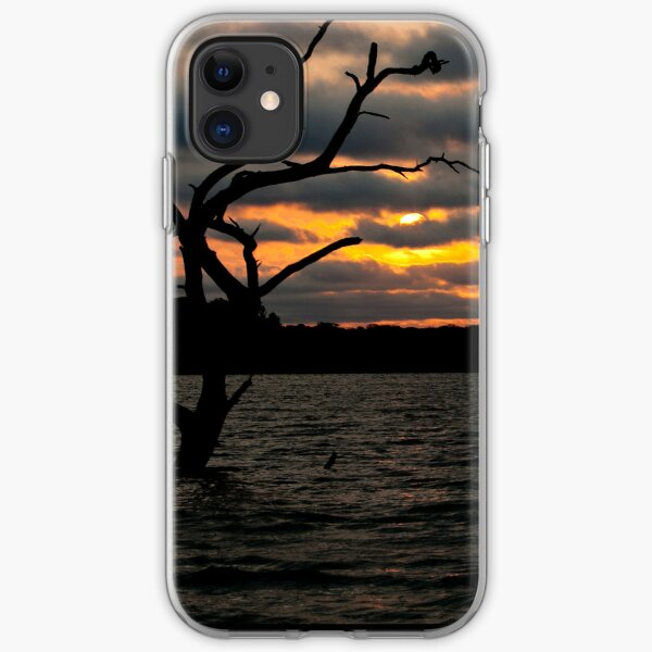 Creepy Tree in Water iPhone Soft Case