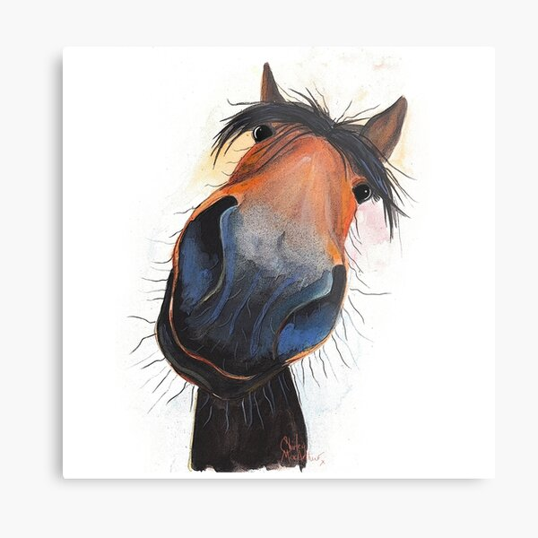 HORSE PRiNT 'HAPPY DAVE' BY SHIRLEY MACARTHUR Metal Print