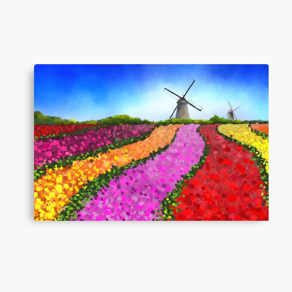 Colorful Dutch Tulip Fields with two Windmills Canvas Print