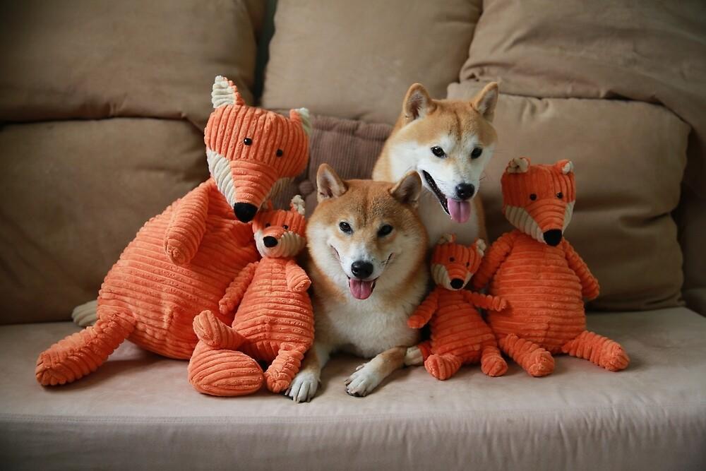 hello foxy family by malina