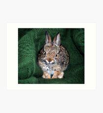 Rest In Peace - Bunny Foo Foo Art Print