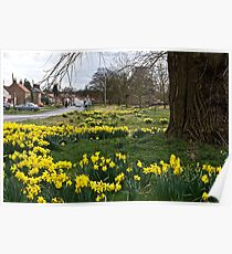 Is Spring really here? Poster