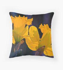 Daffodils in the setting sun. Throw Pillow