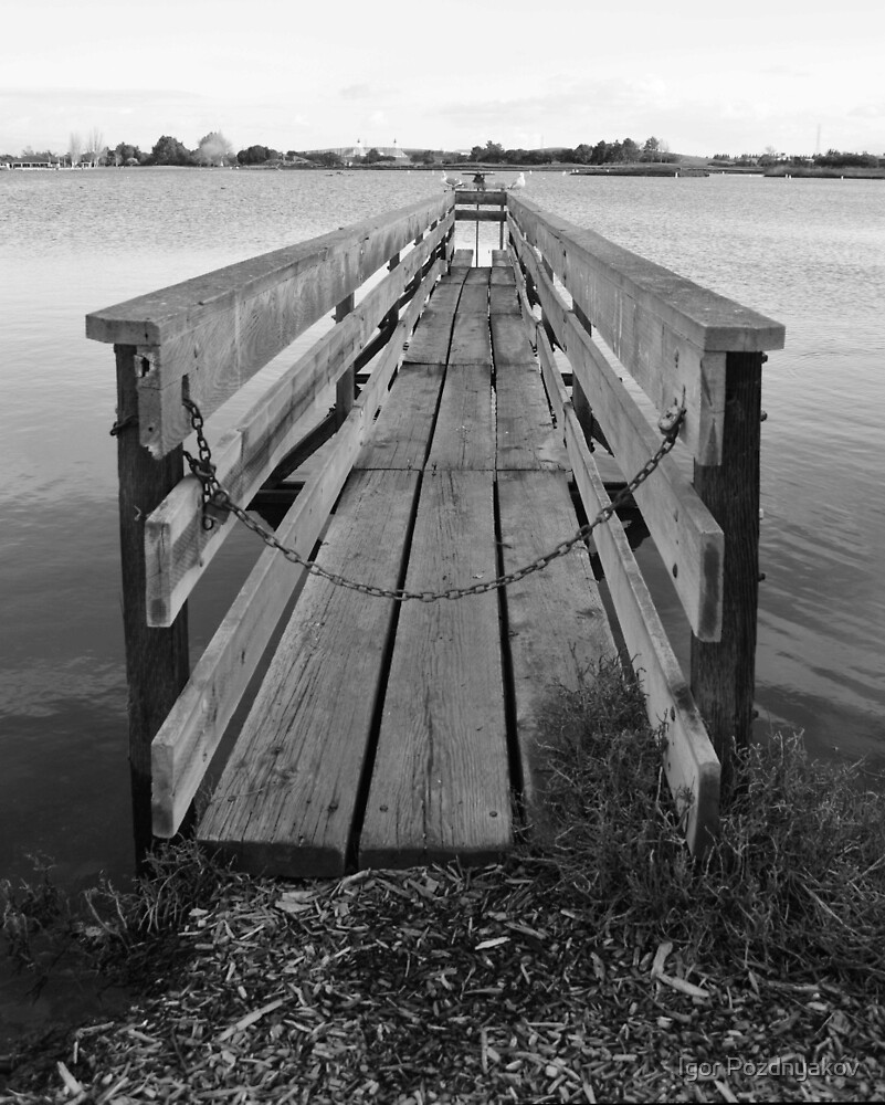 Jetty in Shoreline Park BW. Mountain View, California by Igor Pozdnyakov
