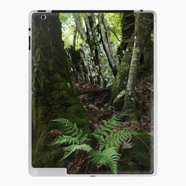 Rocks and Ferns II iPad Skin