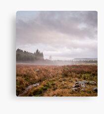 Aberdeenshire Fog Canvas Print
