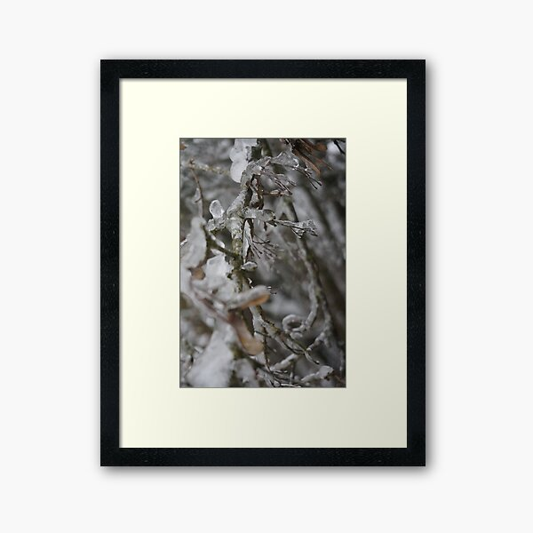 Winter 1314_32 Framed Art Print