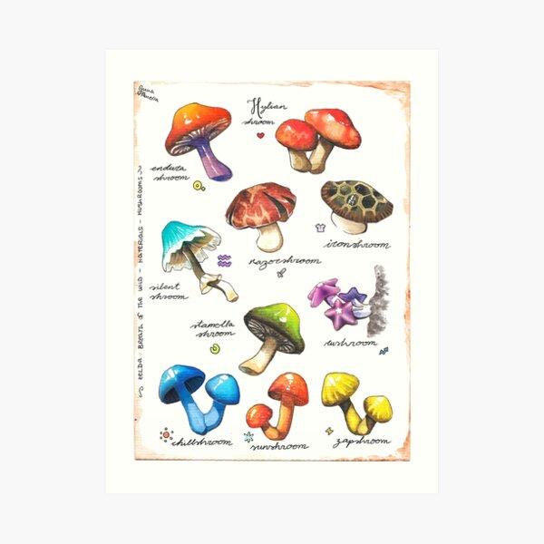 BOTW mushrooms Art Print