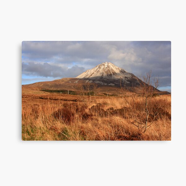 Mount Errigal From The West Canvas Print