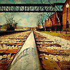 Next time, take the train by Scott Mitchell