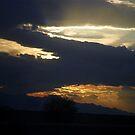 Arizona Rain Clouds by Robbi Levesque