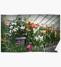 Flower Show Time! Poster