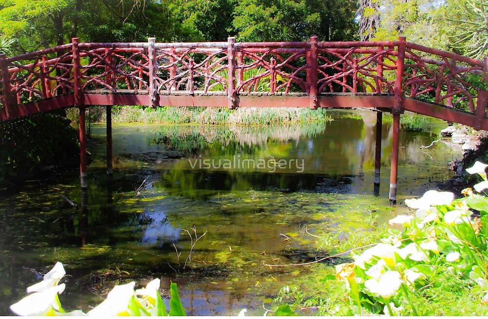 Monet's Garden - no it's Ripponlea lake by visualimagery