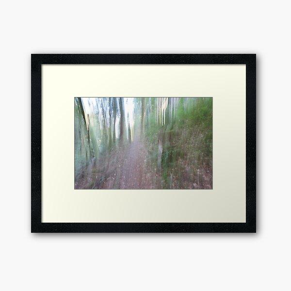 Forest_1311 Framed Art Print