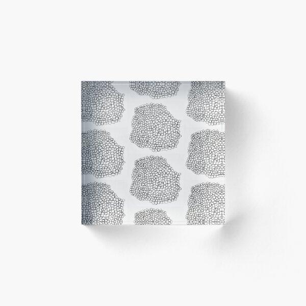 Rounds Acrylic Block