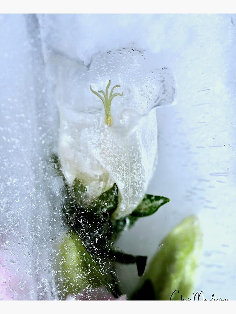 Iced Mystic by ctmendi86