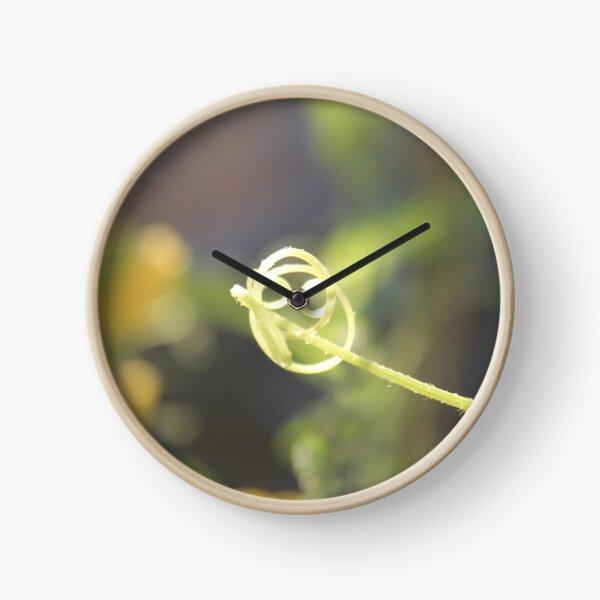 Amazing Patterns of Wildlife  Clock