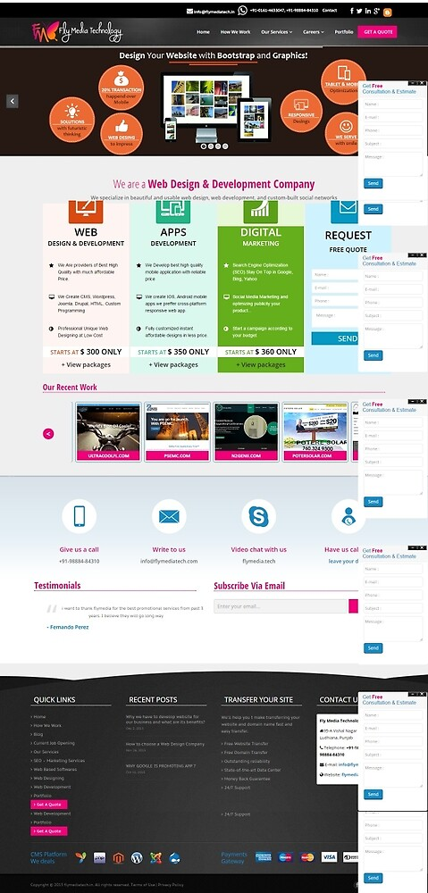 Web designing in India by flymediatech