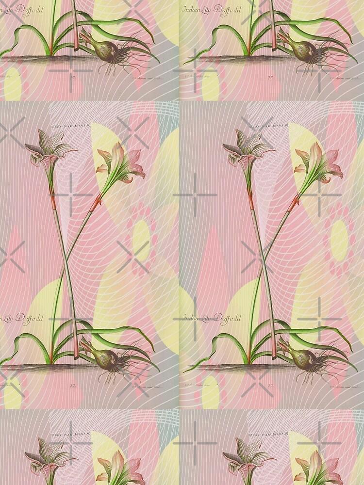 Botanical Print-Indian Lily Daffodil by Matlgirl