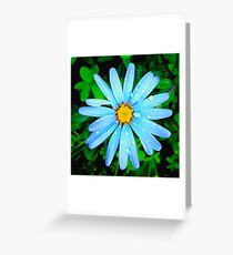 Calm after the rain Greeting Card