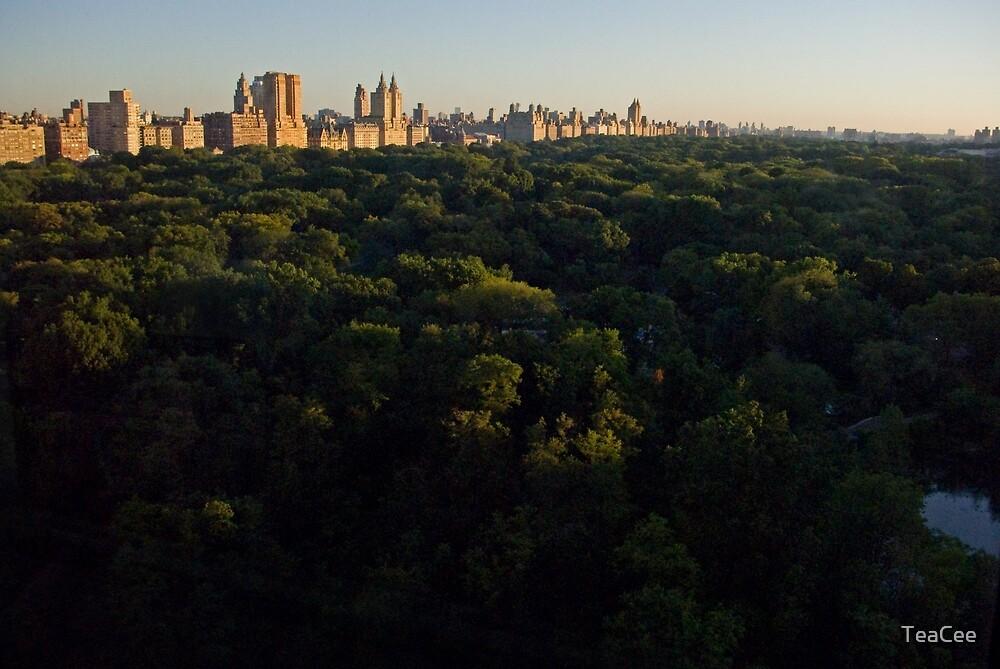 Summer Sunrise Over Central Park West by TeaCee