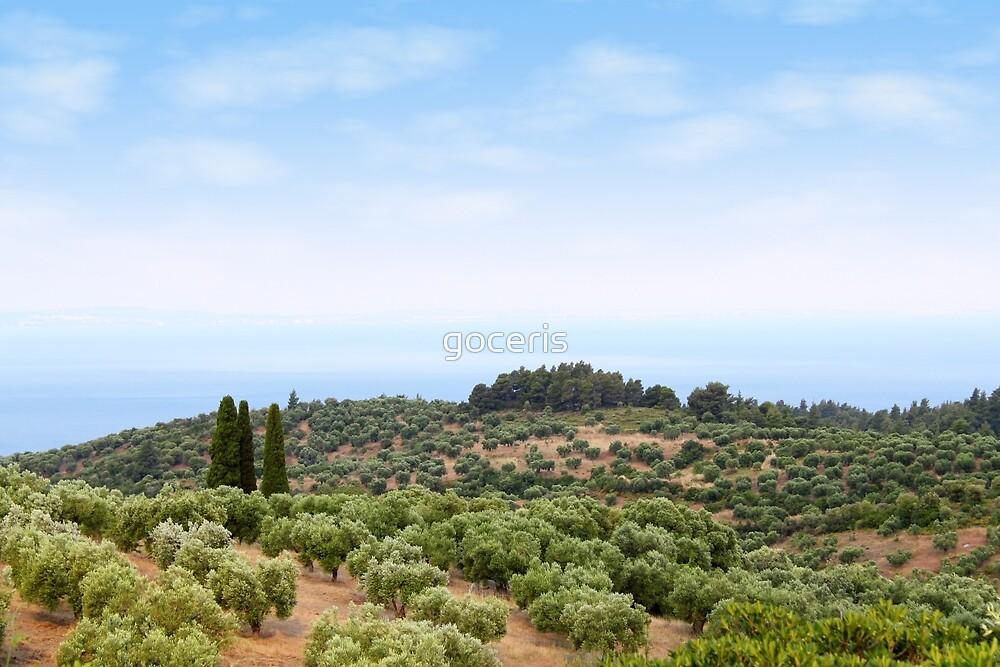 Sithonia Halkidiki Greece landscape by goceris