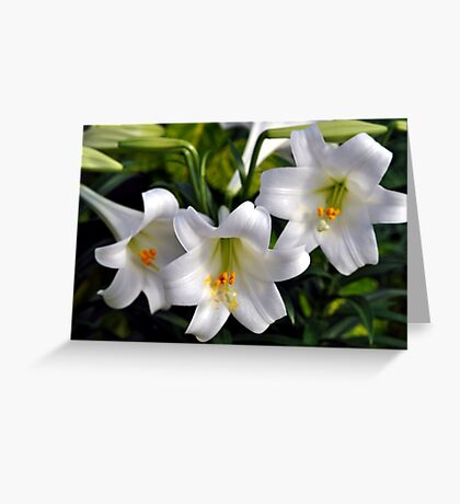 Easter Trumpets Greeting Card