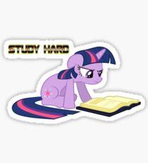 Study Hard (Twilight) No Black Box Sticker