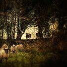 If one sheeps leaps over the ditch.... by EmvandeBee