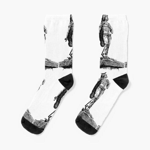 Vercingetorix  Socks