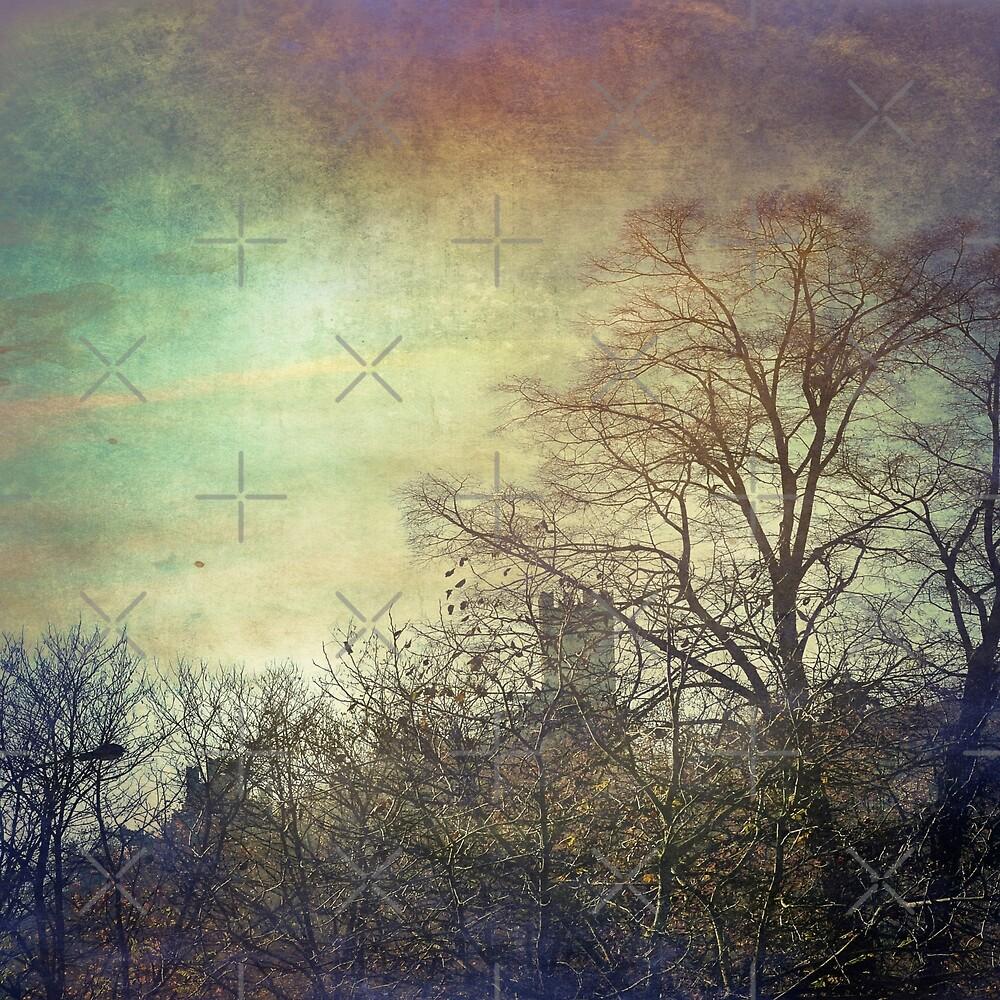 Vintage Landscape 12 by Artskratch