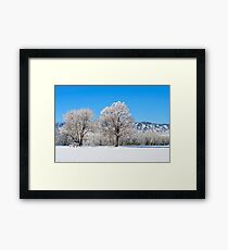 Morning After The Snowstorm Framed Print