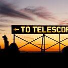 To the Telescope by intellichick