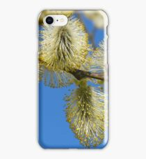 Willow Catkins iPhone Case/Skin