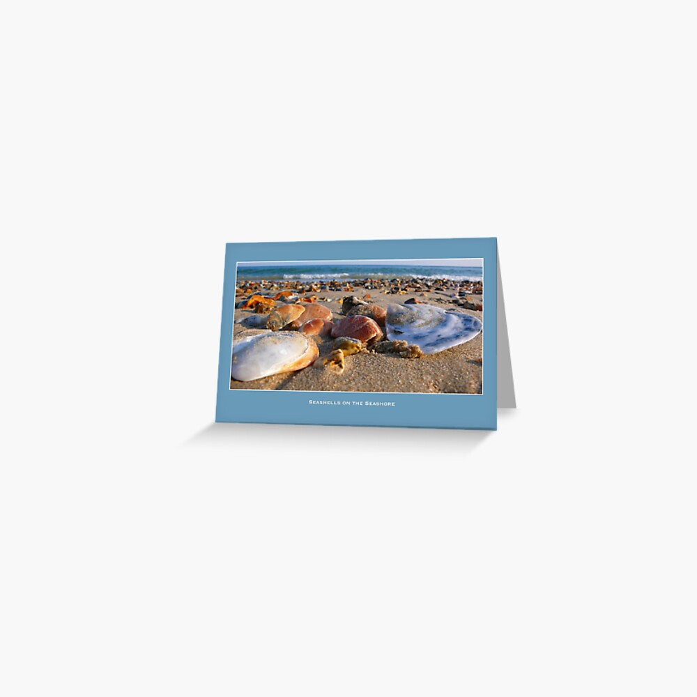Seashells on the Seashore Greeting Card