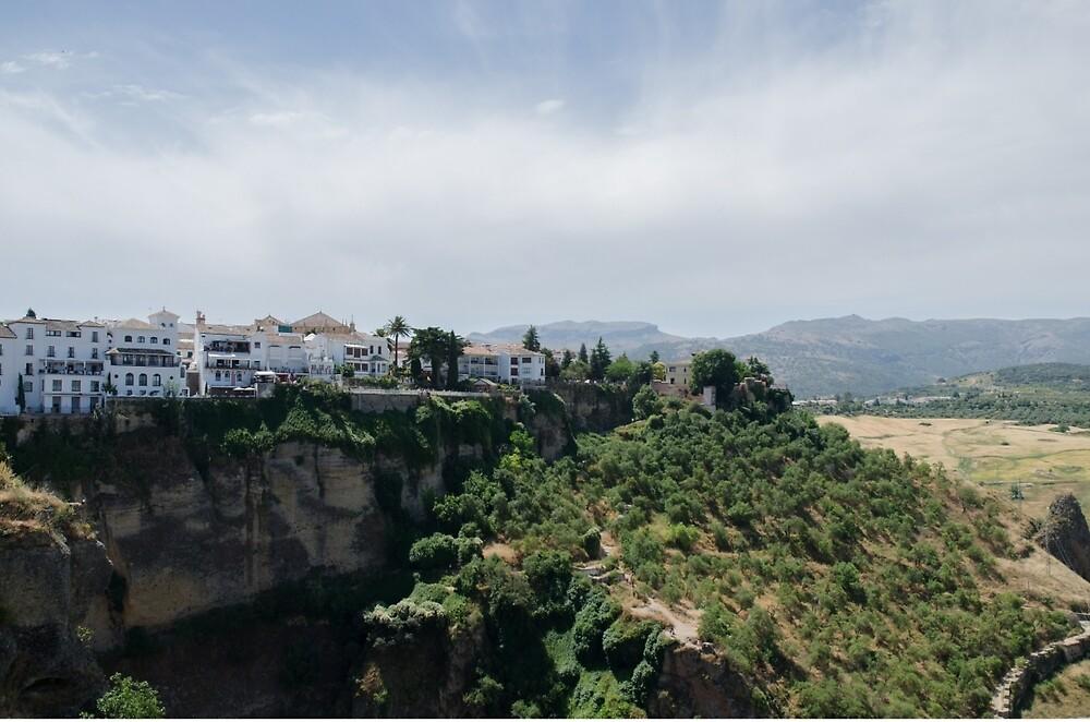 Ronda - Landscape  by Andrea Mazzocchetti