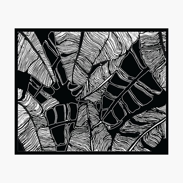Modern Black and White Palm Leaf Print Photographic Print