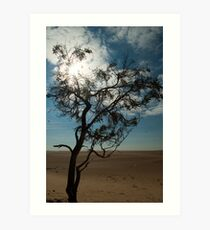 A loner in the desert Art Print