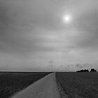 The far horizon. by Paul Pasco